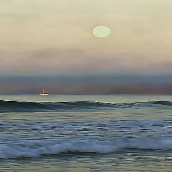 Tracey Harrington-Simpson - Pale Sunset