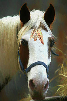 Paleface Horse - Painting by Ericamaxine Price