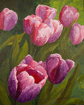 Phyllis Howard - Palette Tulips