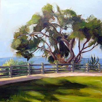 Palisades Park in Santa Monica  by Mohita Bhatnagar