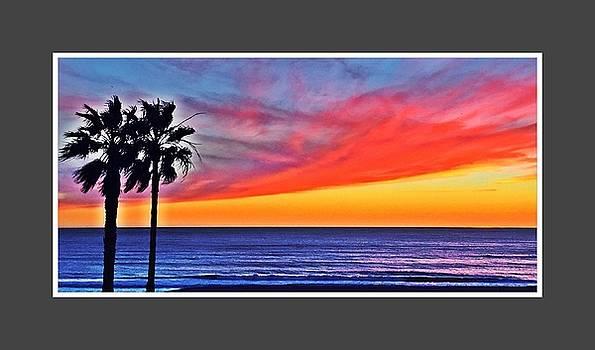 Palm Beach Love by Jennifer Cadence Spalding