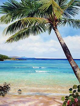 Palm Beach by Nancy Isbell