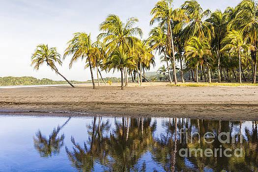 Oscar Gutierrez - Palm Beach Reflection