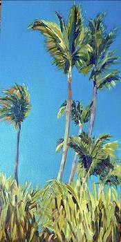 Palm Breeze by Sarah Sheffield
