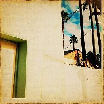 Palm Dance by Sharon Green