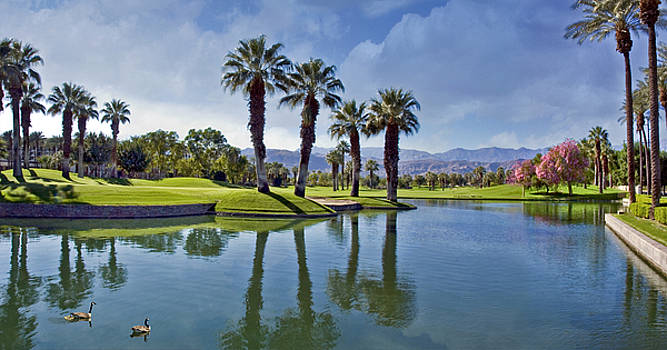 David Zanzinger - Palm Desert Pond Mountaoins