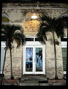 Palm Doorway by Audrey Venute