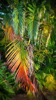 Palm Glow 2 by Jamie Banta
