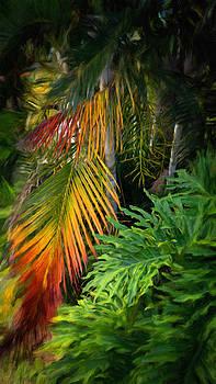 Palm Glow by Jamie Banta
