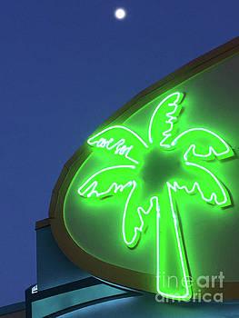 Jost Houk - Palm Glow