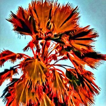Palm by Lelia DeMello