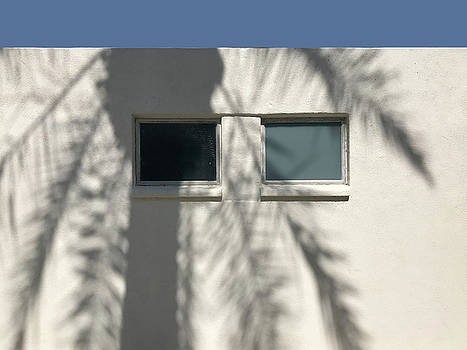 Palm Shadow on Two Windows by Stan  Magnan