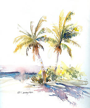 Palm Shadows by P Anthony Visco