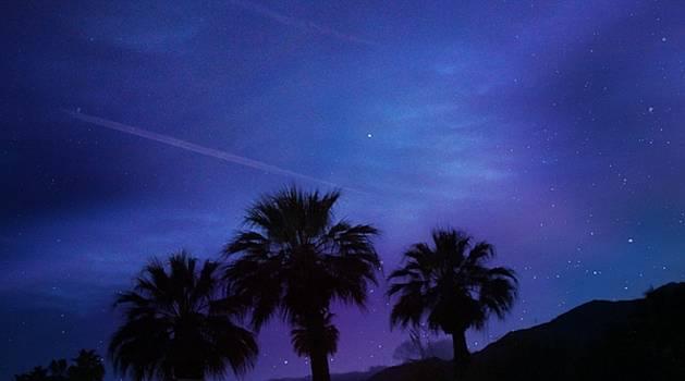 Jenny Revitz Soper - Palm Springs