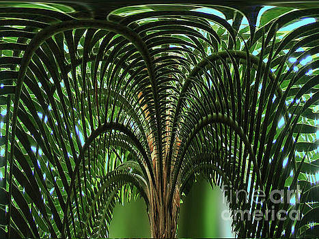 Palm Tree Fractal Nature Art by Carol F Austin