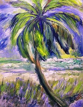 Patricia Taylor - Palm Tree on Windy Beach