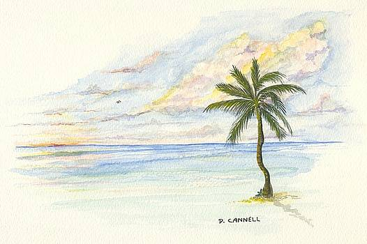 Palm Tree study five by Darren Cannell