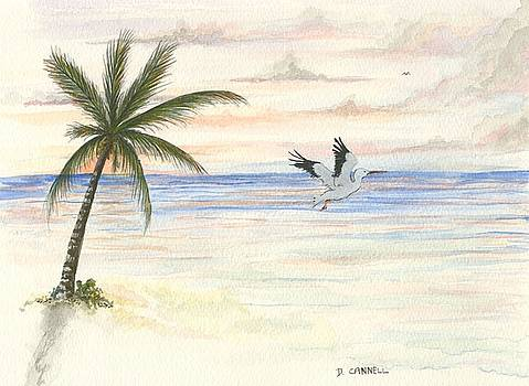 Palm tree study seven by Darren Cannell