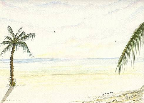 Palm Tree study six by Darren Cannell