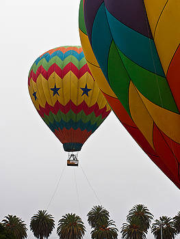 Palm Trees And Balloons by Ron Dubin
