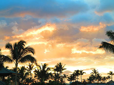 Palm trees and sunset by Vidyut Singhal