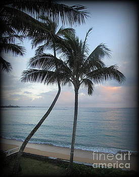 Palm Trees at Sunrise in Oahu by Joy Patzner