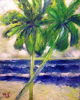 Patricia Taylor - Palm Trees Blowing in the Wind