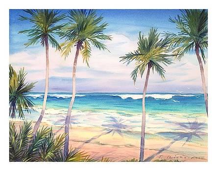 Palm Trees Casting Shadows Onto Beach by Gillham Studios