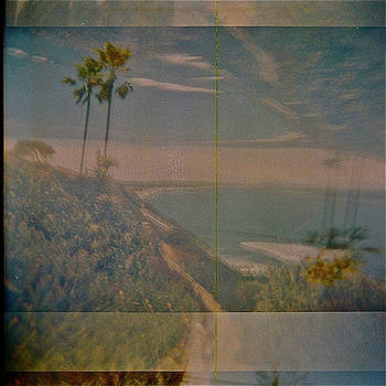 Palm Trees, Encinitas  by Rika Maja Duevel