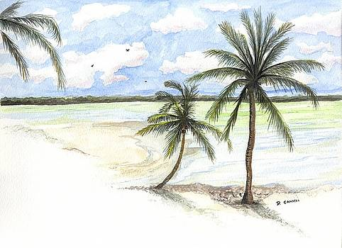 Palm trees on the Beach by Darren Cannell