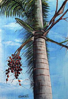 Palma by Gloria E Barreto-Rodriguez