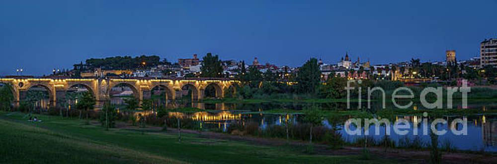 Palmas Bridge Badajoz Spain by Pablo Avanzini