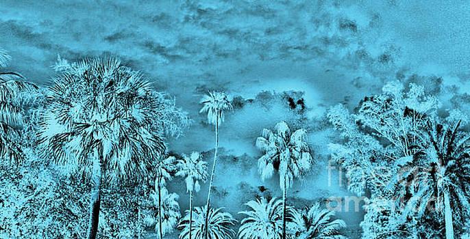 Palmas De Azul by Keri West