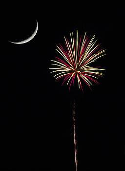 Palmetto Fireworks by David Palmer