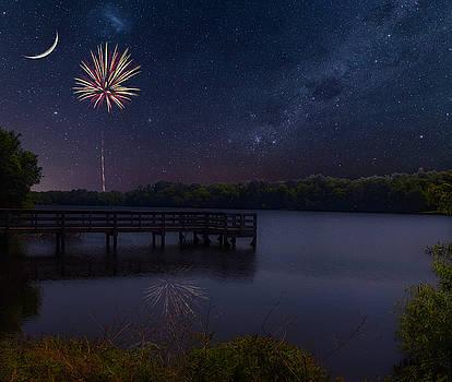 Palmetto Lake by David Palmer
