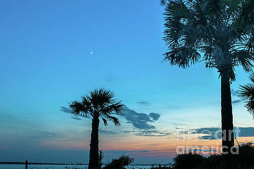 Palmetto Moon Sunset over Sullivan's Island South Carolina  by Dale Powell