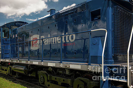 Dale Powell - Palmetto Train and Sky