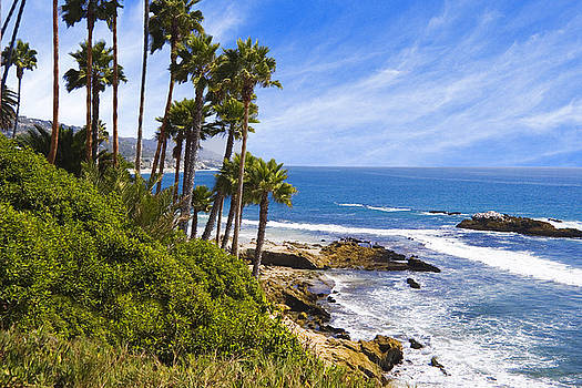 Utah Images - Palms and Seashore Laguna Beach California Coast