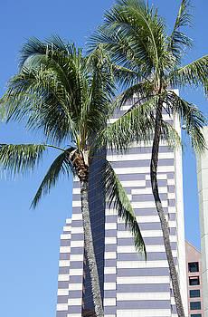 Ramunas Bruzas - Palms and Skyscrapers