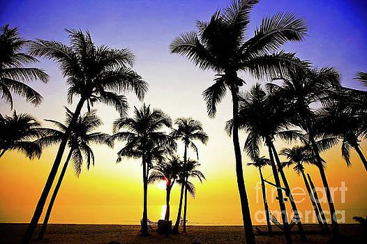 Palms on sand beach by Pongsak Deethongngam