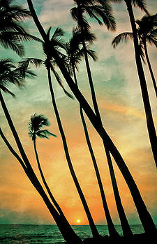 Palms Swaying by Don Schwartz