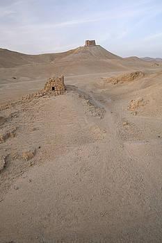 Palmyra desert by Marcus Best