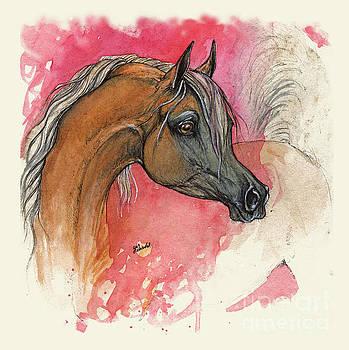 Angel Tarantella - palomino arabian horse 2013