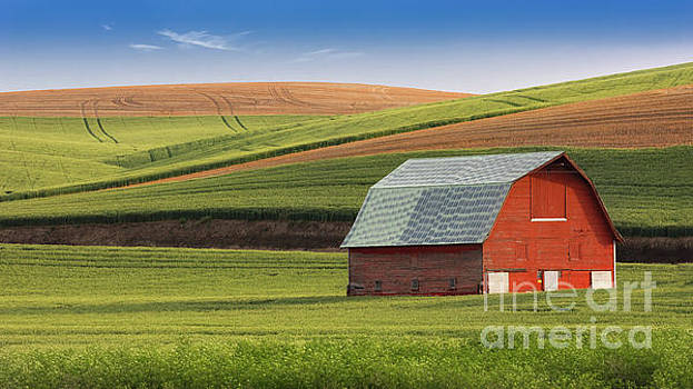 Palouse Barn and Fields by Jerry Fornarotto