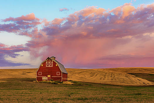 Palouse Country by Mike Walker