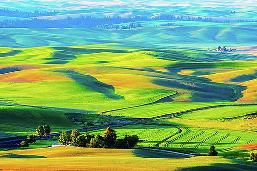 Palouse wheat field by Hisao Mogi