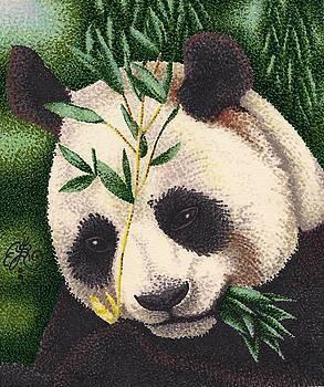 Scarlett Royal - Panda Bear