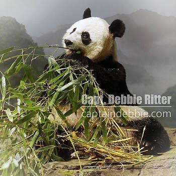 Panda Mei Xiang 6228 by Captain Debbie Ritter