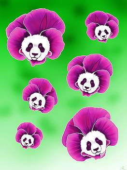 Panda Pansies by Norman Klein