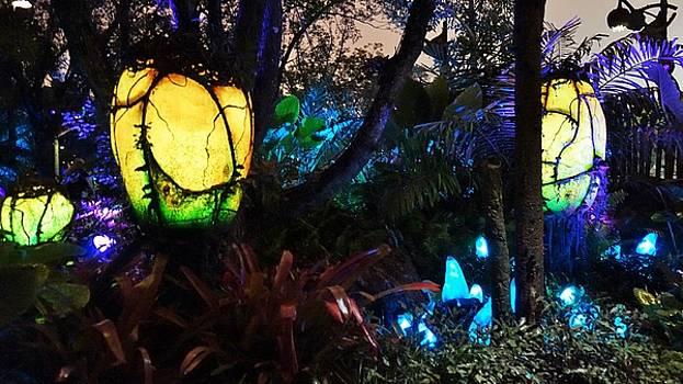 Pandora Plants Aglow by Barkley Simpson